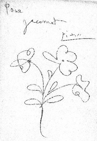 Fleur de Picasso pour Jacomet.
